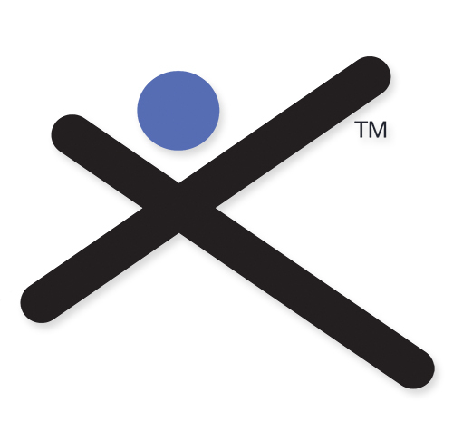 Silicon Valley Directors' Exchange logo showing an X symbol, a blue dot, and a trademark symbol.