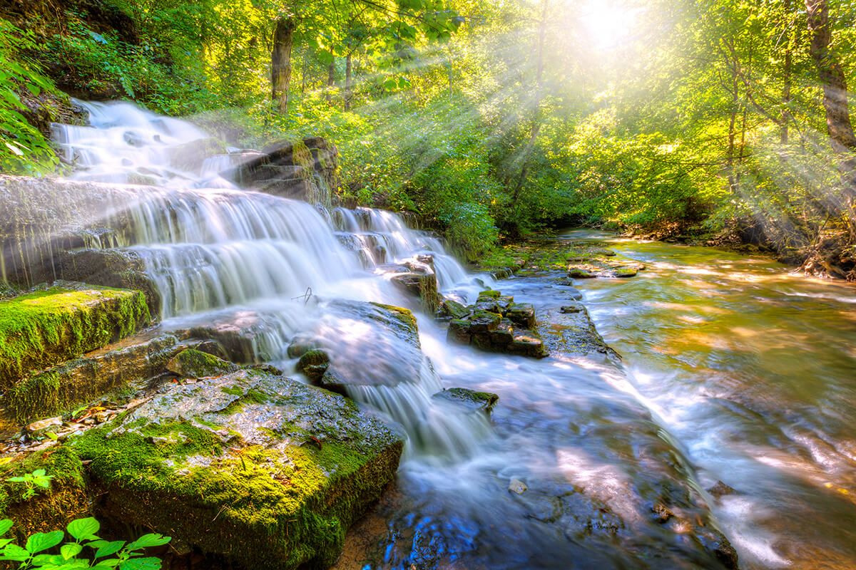 Waterfall running over rocks in a green forest
