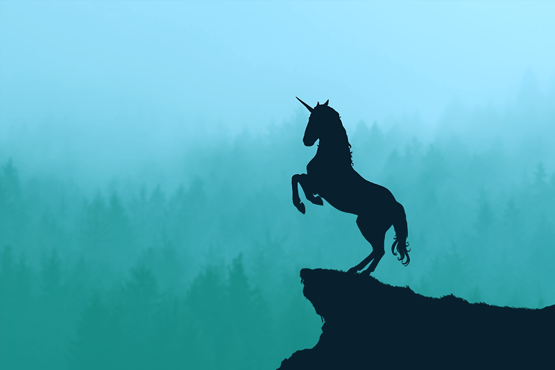 Unicorn on a teal background