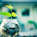 Plant in Money Jar Savings