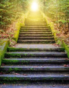 Stairs leading up to green trees and sunshine