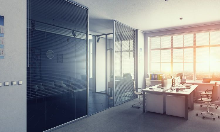 Modern office with sun shining through window