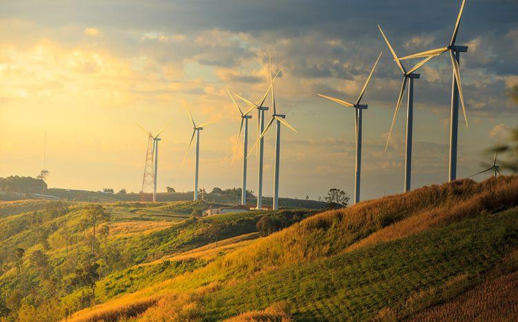 Wind turbines on sunny hillside