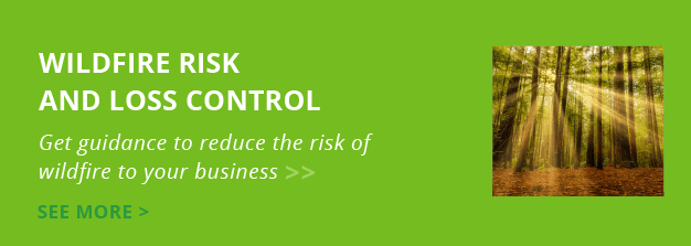 Wildfire Risk and Loss Control: Get guidance to reduce the risk of wildfire to your business