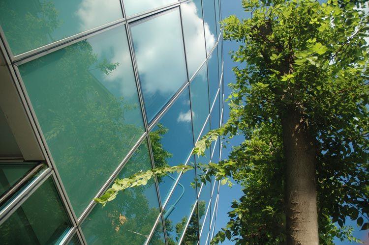 Building tree clouds sky